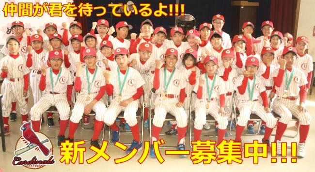 松戸KSカージナルス